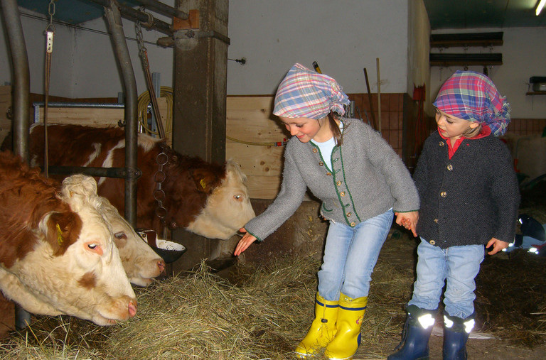 The kids can visit a farm.