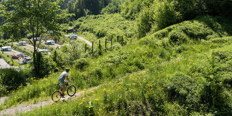 There are numerous mountain bike routes in close proximity